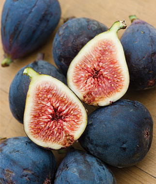 Fig 'Black Mission'