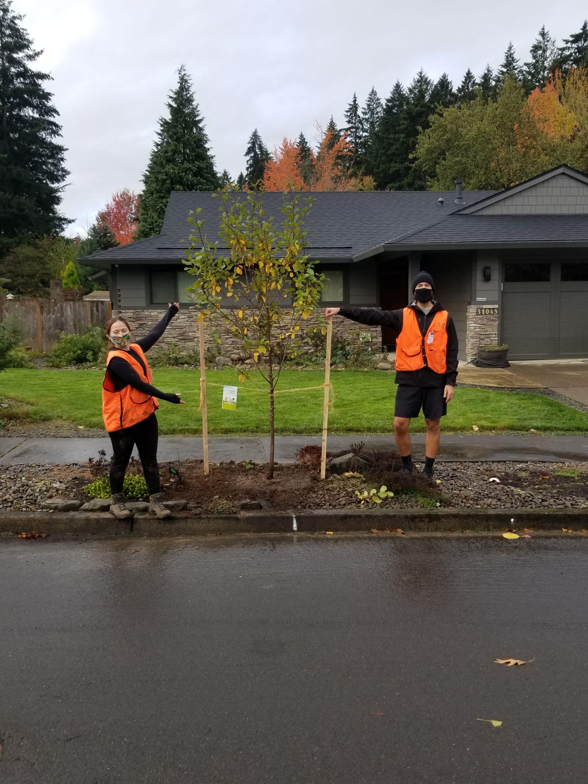 Tree Planting (Sat)